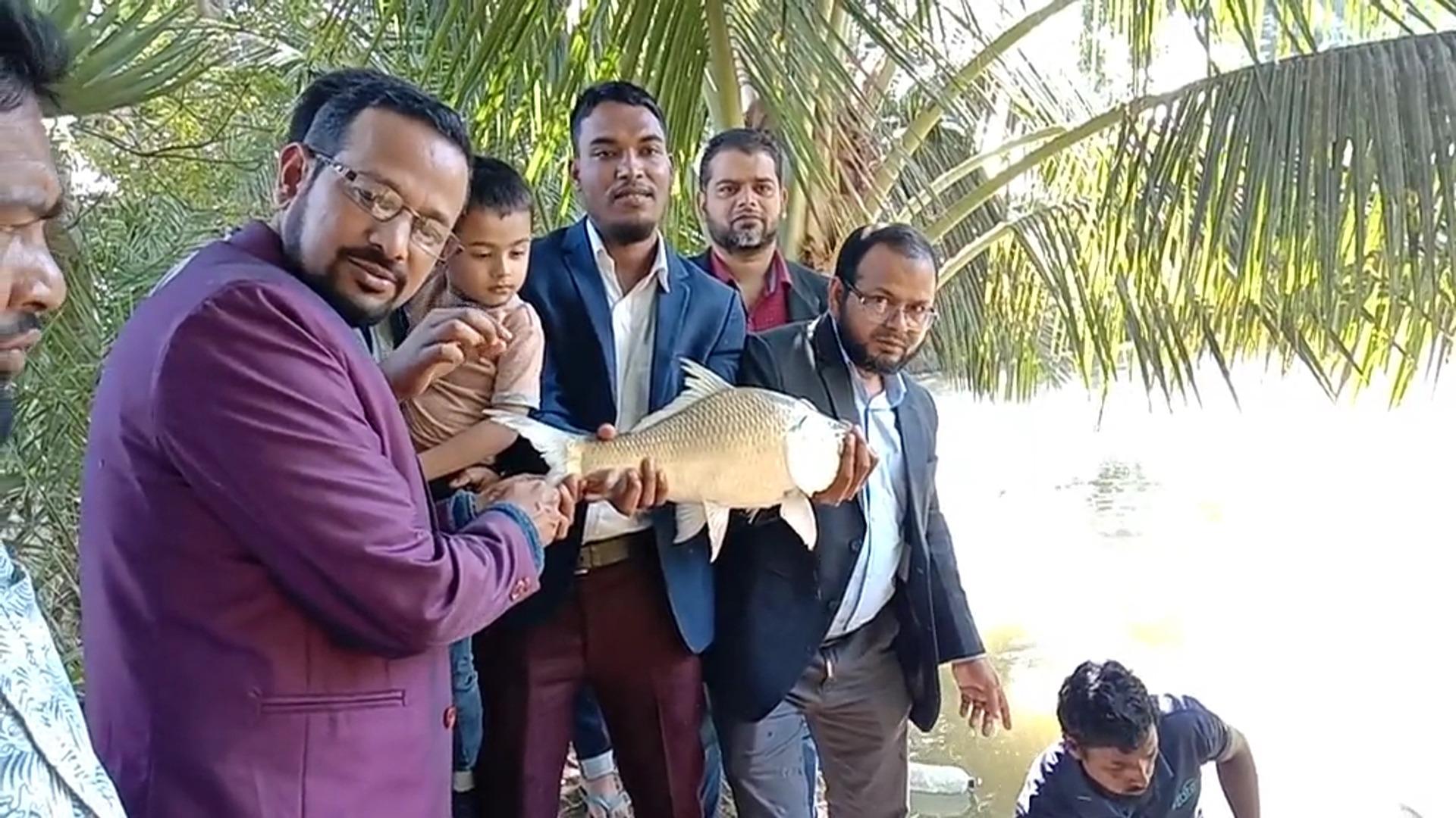 Photo of কার্প জাতীয় মাছ চাষে নতুন সফলতা